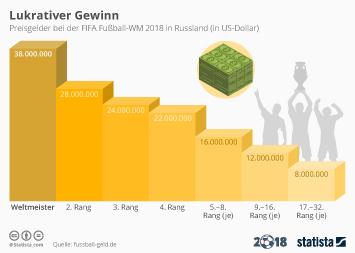 Infografik - Die Preisgelder der WM