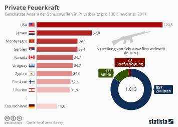 Infografik - Schusswaffen in Privatbesitz