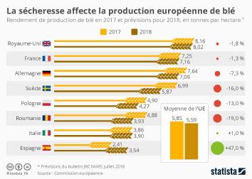 Infographie - impact secheresse et chaleur sur production de blé