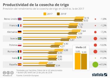 Infografía: 2018, excelente año para los productores de trigo en España | Statista