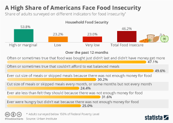 Study Finds a High Share of Americans Face Food Insecurity