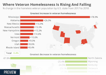 Infographic -  the percentage change in the homeless veteran population