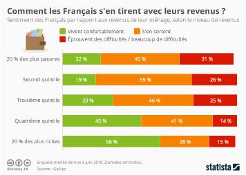 Infographie - niveau de revenus et niveau de vie des francais