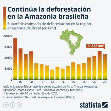 Infografía - Deforestación estimada en la amazonia brasileña