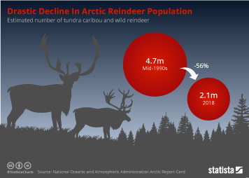 Infographic - estimated number of tundra caribou and wild reindeer