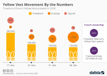 Yellow Vest Movement By the Numbers