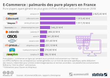 Infographie - les plus gros pure players ecommerce en france