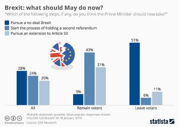 Infographic - brexit plan b survey