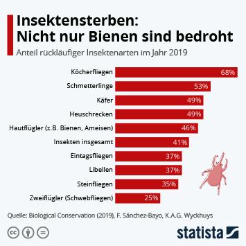 Infografik - Anteil rückläufiger Insektenarten