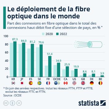 Infographie - Fibre optique : quels pays sont les mieux équipés ?