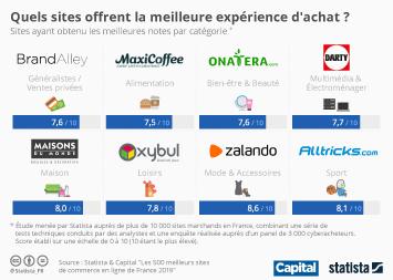 Infographie - les meilleurs sites de e-commerce en france