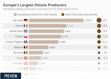 Agriculture industry in Europe Infographic - Europe's Largest Potato Producers