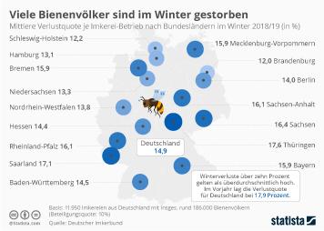 Infografik - Verlustquote bei Bienenvölkern im Winter