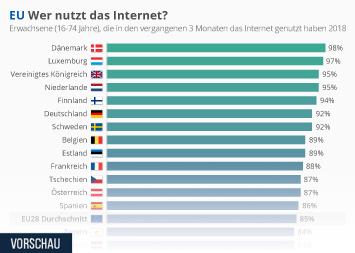 Link zu EU: Wer nutzt das Internet? Infografik
