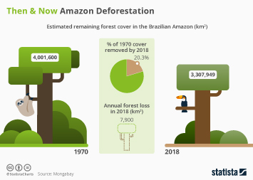 Infographic - estimated remaining forest cover in the Brazilian Amazon