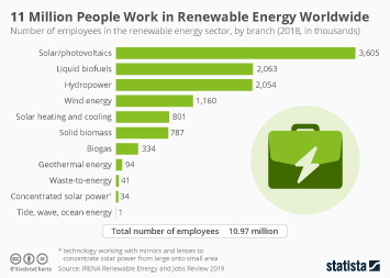 Infographic - renewable energy employment worldwide by branch