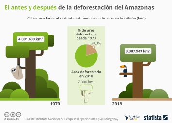 ¿Cuánta superficie del Amazonas brasileño todavía se conserva?