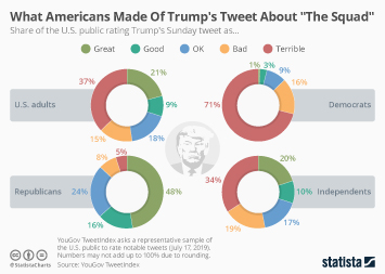 Infographic - public views on Trump's tweets about the squad