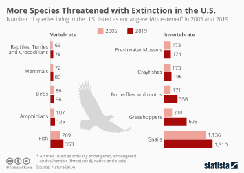 Infographic - endangered species in the U.S.