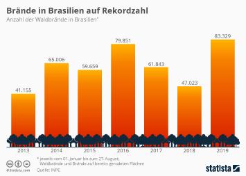Infografik - Anzahl der Brände im brasilianischen Regenwald