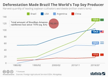 Infographic - Harvest quantity of leading soybean cultivators