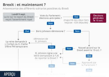 Infographie - scenarios possibles du brexit