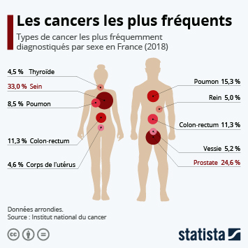 Infographie - types de cancer plus frequents france