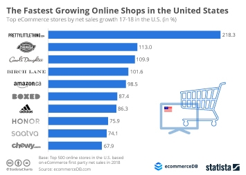 Infographic - ecommercedb fastest growing online shops us