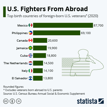 Infographic - us veterans from another country