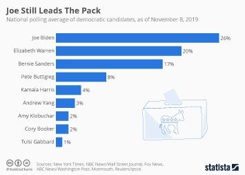 Infographic - 2020 democratic candidates