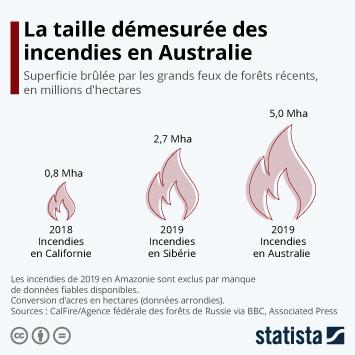 Infographie - superficie brulee par les grands feux de forets