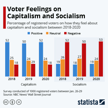 Infographic - voters feelings on capitalism and socialism