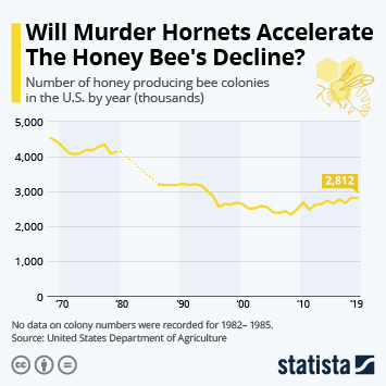 Pest control in the U.S. Infographic - Will The Murder Hornet Accelerate The Honey Bee's Decline?