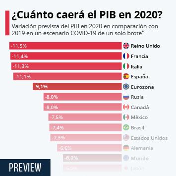 Enlace a ¿Cuánto caerá el PIB en 2020? Infografía