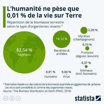 Infographie: La répartition de la biomasse sur Terre | Statista