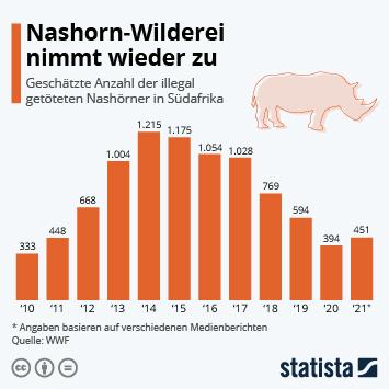 Infografik: Weniger Wilderei in Südafrikas Nationalparks   Statista