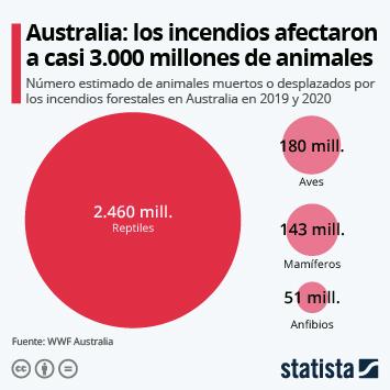 Enlace a Tres mil millones de animales, víctimas de los incendios de Australia Infografía