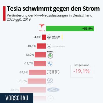 Infografik: Tesla schwimmt gegen den Strom   Statista