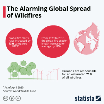 The Alarming Global Spread of Wildfires