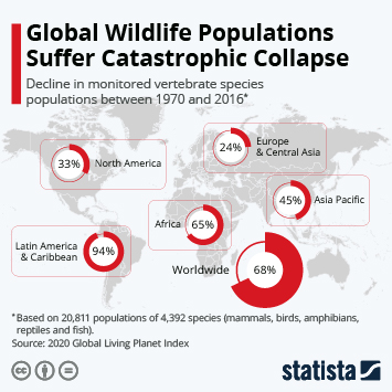 Infographic: Global Wildlife Populations Suffer Catastrophic Collapse | Statista
