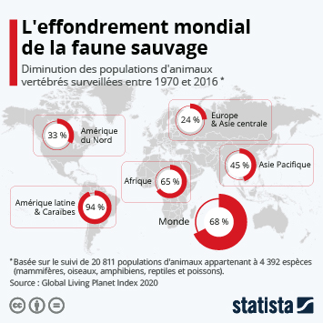 Infographie: L'effondrement mondial de la faune sauvage | Statista