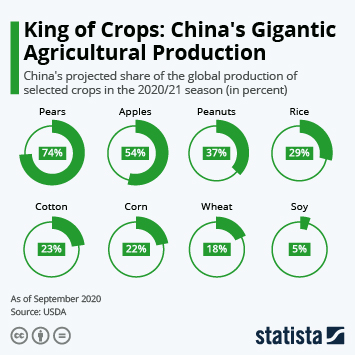 Infographic: King of Crops: China's Gigantic Agricultural Production | Statista
