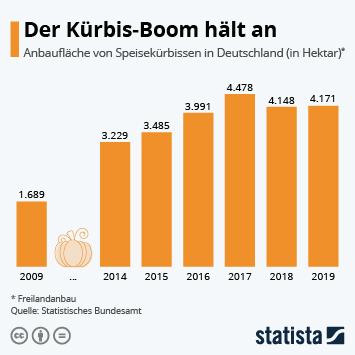 Link zu Der Kürbis-Boom hält an Infografik