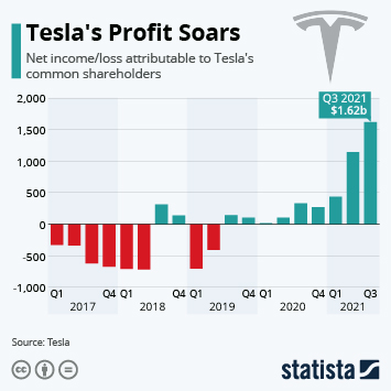 Link to Profitability the Key for Tesla's S&P 500 Inclusion Infographic