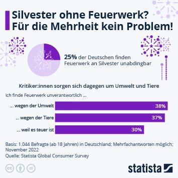 Link zu 1/4 der Deutschen kann nicht ohne Feuerwerk Infografik