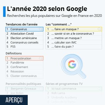 Lien vers L'année 2020 selon Google Infographie
