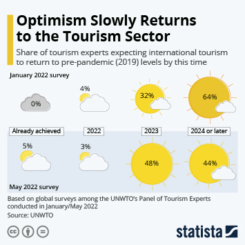 Link to Tourism Experts Fear Long Road to Recovery Infographic