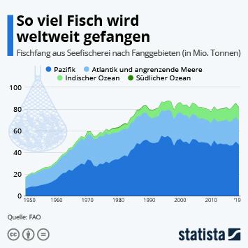 Infografik: Fischfang auf Weltmeeren seit 1950 stark angestiegen | Statista