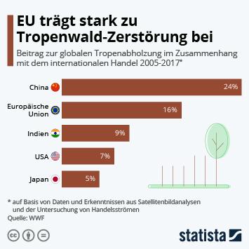 Infografik - EU trägt stark zu Tropenwald-Zerstörung bei