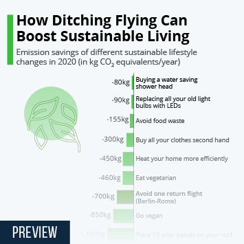 Link to How Ditching Flying Can Boost Sustainable Living Infographic
